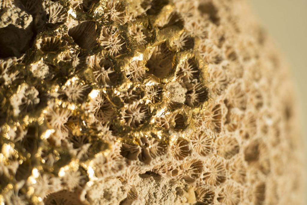 Coral by Zuleika Penniman