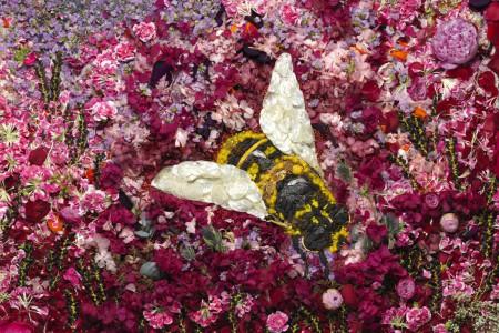 Bee-_-Vik-Muniz