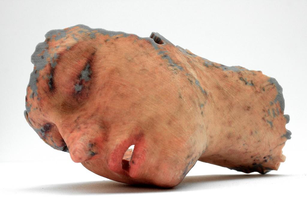 Lorna Barnshaw, Replicants, 2013, Impression 3D, 30 x 15 cm, Courtesy : l'artiste, Photo © Lorna Barnshaw