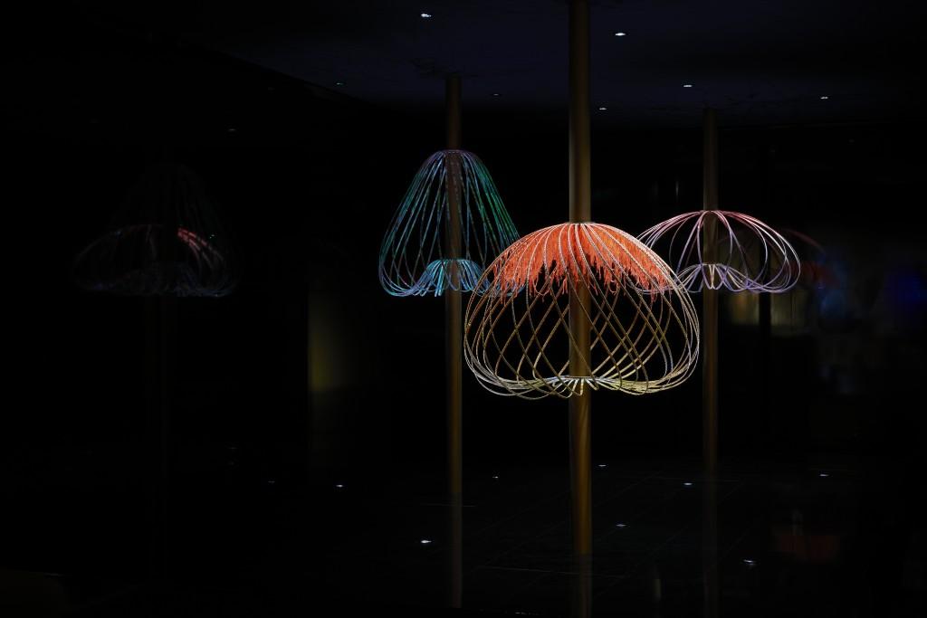 Elaine Yan Ling Ng Sundew for Swarovski Designers of the Future (2)
