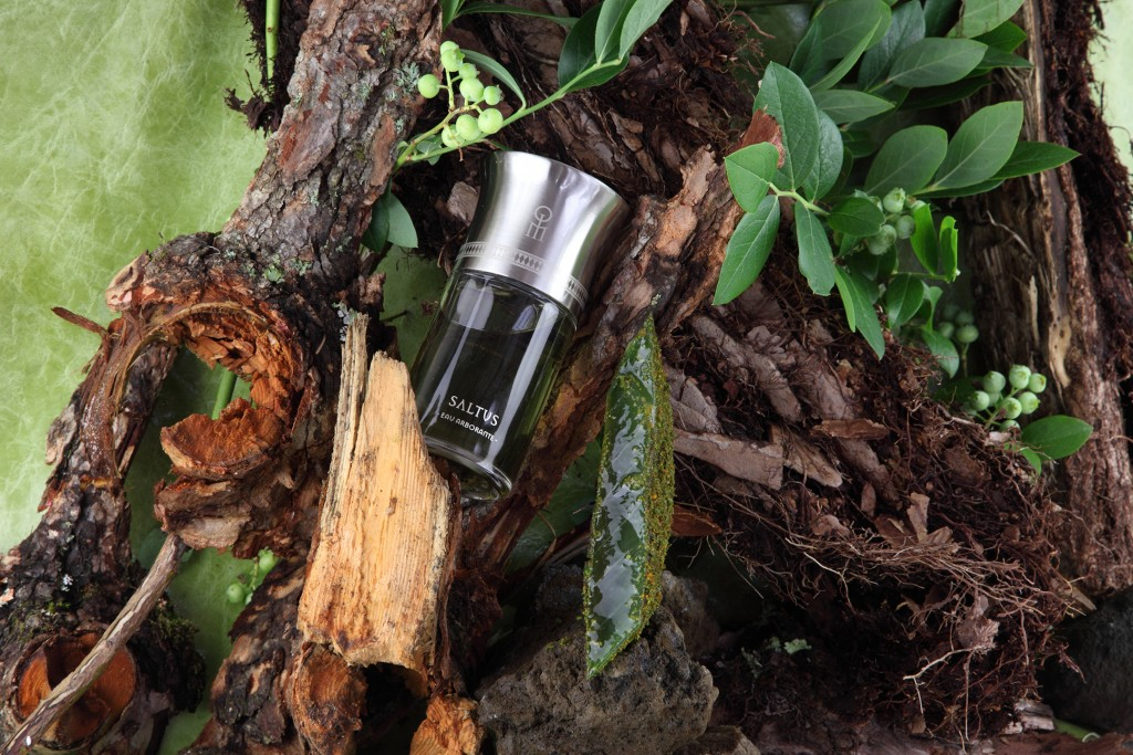 EAUX ARBORANTES: SALTUS The bubbling vigour of life; the will to live, to jump, to rise; the vital energy of the ambition to grow. INGREDIENTS – Aloe Vera infused with Green Chartreuse, cypress wood, orange, liquorice Cocoa powder, pistachio, kabosu, matcha.