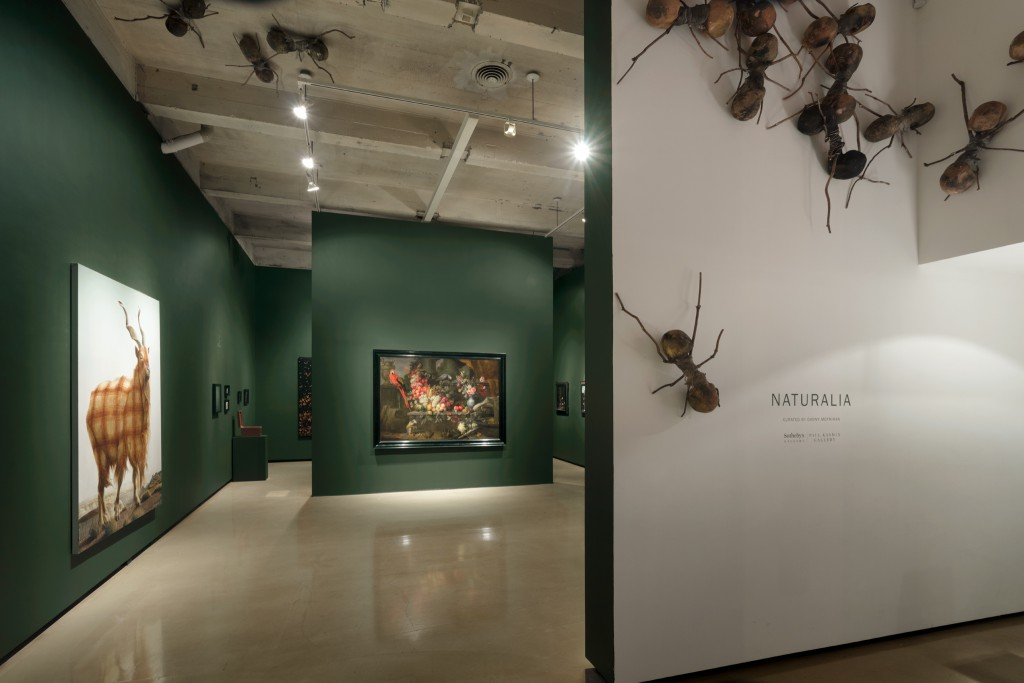 Installation view of Naturalia. Photo: Christopher Stach