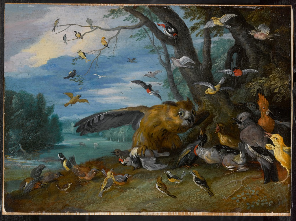 An Owl Fighting Other Birds (circa 1630-1678) by Jan Brueghel the Younger and Studio, oil on copper.