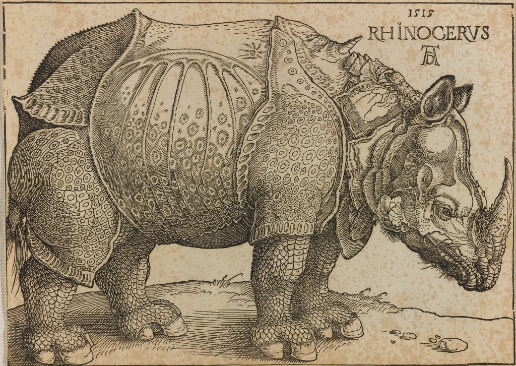 The Rhinoceros, (circa 1620, woodcut made in 1515) by Albrecht Dürer, woodcut on paper.
