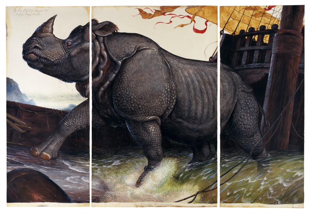 Loss of the Lisbon Rhinoceros (2008) by Walton Ford, watercolor, gouache, pencil, and ink on paper. Courtesy of Paul Kasmin Gallery