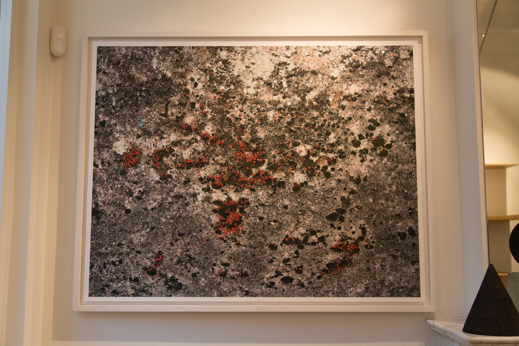 Installation of Pyrrhocoridae by Frederick Vidal, ultrachrome pigment print, 120cm x 150cm, edition 5+2, 2008