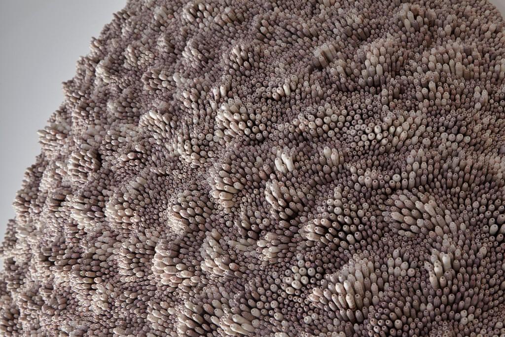 Detail of Echinothrix Imago Sui, 2017, by Rowan Mersh. Photo: Frankie Pike