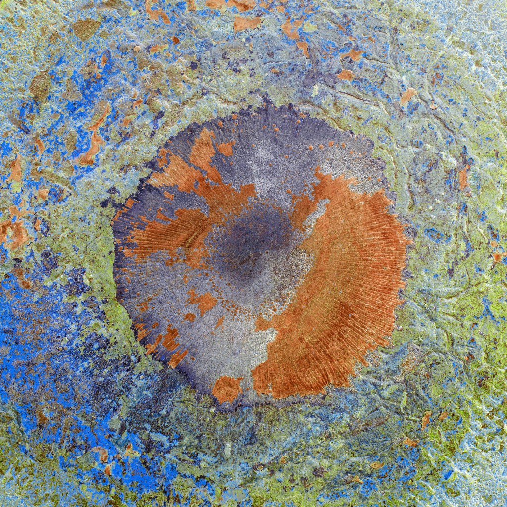 """WELL X, 2017 Archival pigment print 48"""" x 48"""" x 3"""""""
